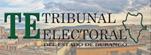 TRIBUNAL ELECTORAL DEL ESTADO DE DURANGO