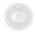 TRIBUNAL ELECTORAL DEL ESTADO DE NUEVO LEON