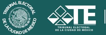 TRIBUNAL ELECTORAL DEL DISTRITO FEDERAL (CIUDAD DE MEXICO)